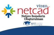 netpro-somelerin-oluşturulması-770x433
